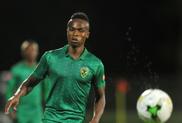 Image result for miheso golden arrows